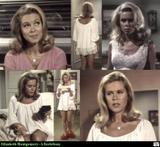 Elizabeth Montgomery : A Classic Beauty